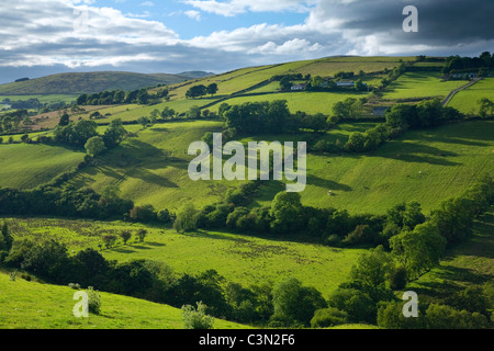 Summer fields in the Glenelly Valley, Sperrin Mountains, County Tyrone, Northern Ireland. - Stock Photo
