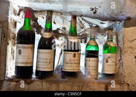 South Africa, Western Cape, Stellenbosch, Muratie Wine Estate. Bottles in tasting room. - Stock Photo