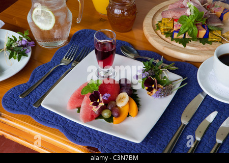 South Africa, Western Cape, Calitzdorp, Red Mountain Nature Reserve. Breakfast. - Stock Photo