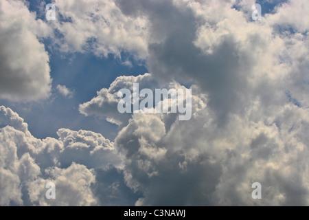 Cumulus mediocris clouds developing into Cumulus congestus stage. - Stock Photo