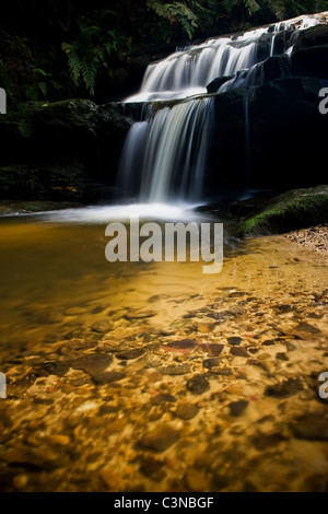 Leura Cascades and foreground in the Blue Mountains of Sydney, Australia - Stock Photo