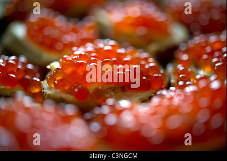 Red caviar sandwich - Stock Photo