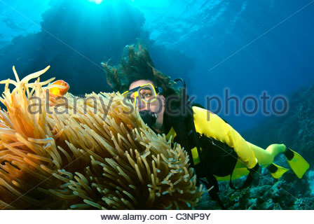 Woman scuba diving on The Great Barrier Reef Australia - Stock Photo