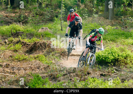 Mountain biking on the North Downs in Surrey - Stock Photo