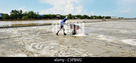 Salt fields of samut sakhon, labourers harvesting salt, samut sakhon , Thailand - Stock Photo