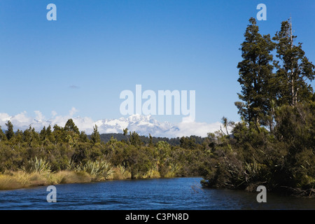 New Zealand, South Island, West Coast, View of Tai Poutini National Park with mountains in background - Stock Photo