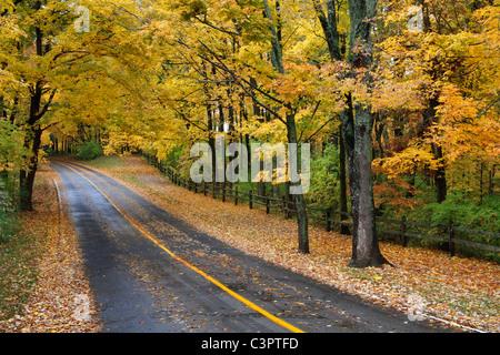 A Blacktop Road Through The Park In Autumn, Sharon Woods, Southwestern Ohio, USA - Stock Photo