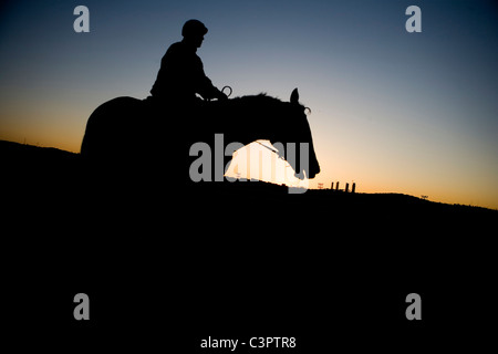 Jockey in silhouette during sunrise at  Hipodromo de la Zarzuela in Madrid (Spain). - Stock Photo