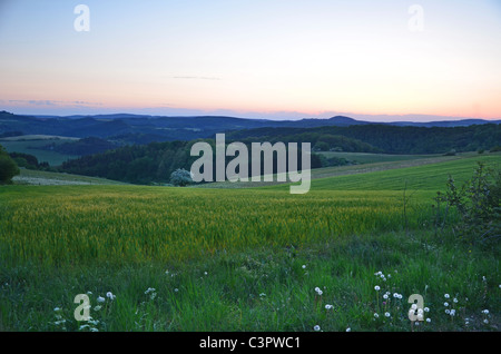 Green Landscape spring summer sundown evening blossom trees flowers forest wood hills mountain moody light grain - Stock Photo