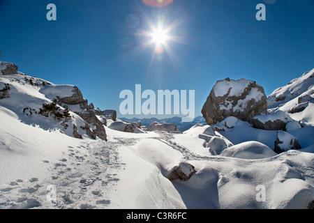 Walking track through winter landscape - Stock Photo