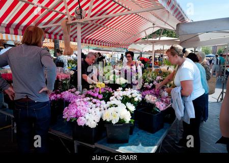 Cours Saleya market in Nice - Stock Photo