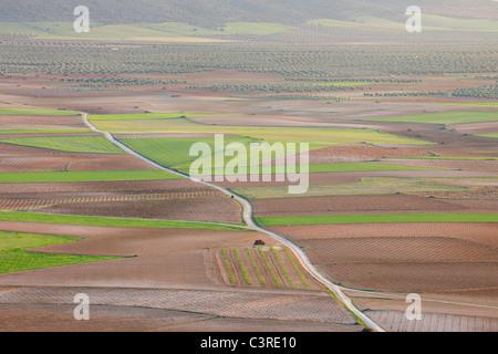 Spain, Castilla-La Mancha, Toledo Province, Consuegra, View of dirt road passing through fields - Stock Photo