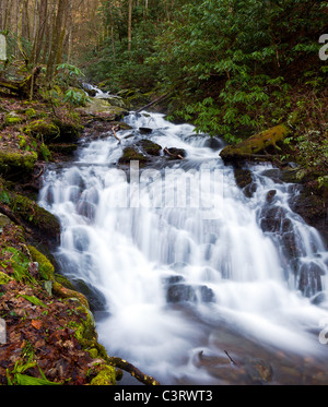 River floods down the hillside in the Smoky Mountains in spring - Stock Photo