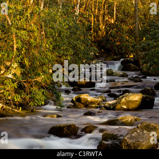 River floods down the hillside in the Smoky Mountains in spring as the setting sun lights the valley - Stock Photo