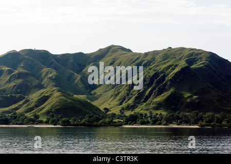 Komodo Island, Indonesia, March 2011 - Stock Photo