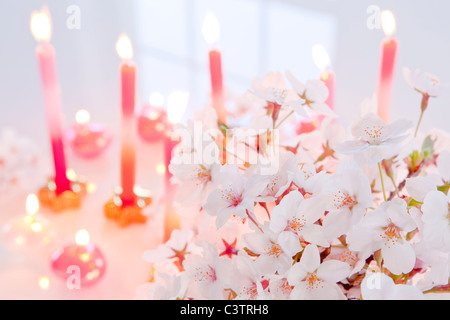 Cherry Blossoms and Candles - Stock Photo