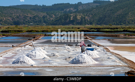 Worker collecting sea salt in salt pans at Cahuil, Colchagua, Chile. - Stock Photo