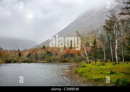 The Peak Of Autumn At Crawford Notch State Park In The White Mountains Of New Hampshire, USA - Stock Photo