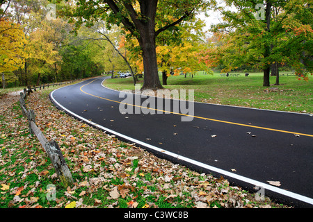 A Blacktop Road Through The Park On A Rainy Day In Autumn, Sharon Woods, Southwestern Ohio, USA - Stock Photo