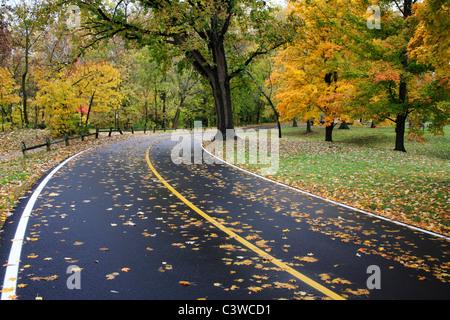 A Blacktop Road Through The Park On A Rainy Autumn Day, Sharon Woods, Southwestern Ohio, USA - Stock Photo