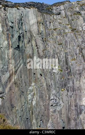 The West Wall aka Quarryman Wall in Twll Mawr (Matilda), Dinorwig slate mine, Snowdonia, North Wales, UK - Stock Photo
