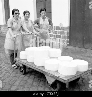 1950s, Azores. Three female factory workers stand outside the factory with a trolley full of cheese in San Miguel, - Stock Photo