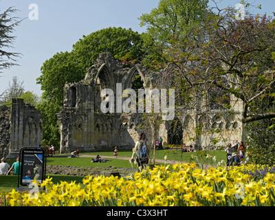 Ruins of St Marys Abbey Museum Gardens York North Yorkshire England UK United Kingdom GB Great Britain - Stock Photo