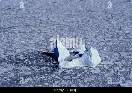 Antarctica. Landscape. Aerial of floating iceberg and pack ice. - Stock Photo