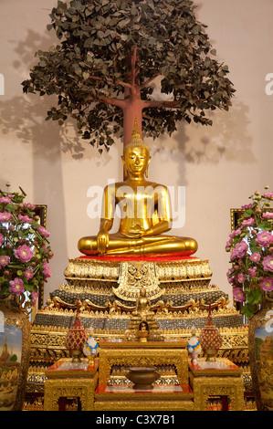 Wat Pho Temple, Bangkok - sitting Buddha under the Bodhi tree - Stock Photo