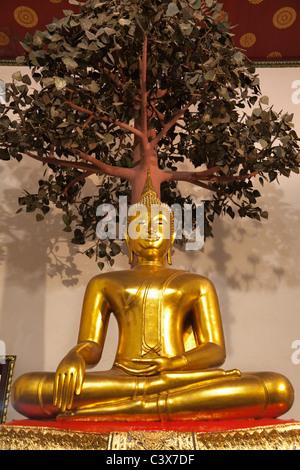 Wat Pho Temple, Bangkok - sitting Buddha under the Bodhi tree 2 - Stock Photo