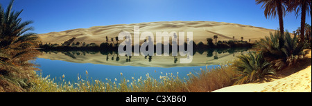 Libya, Ubari, Sahara Desert, Oasis with palm trees and lake. Um El Ma salt lake. - Stock Photo
