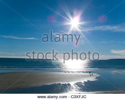 Woman and dog enjoying the sun, beach and ocean at Gerrans Bay, Cornwall, United Kingdom - Stock Photo