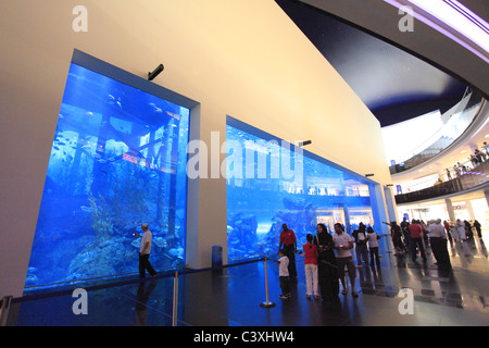 Dubai Mall Aquarium, Dubai, United Arab Emirates - Stock Photo