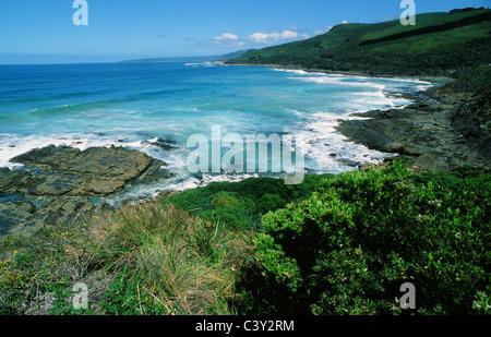 Section of the Great Ocean Road near Apollo Bay, Victoria, Melbourne, Australia - Stock Photo