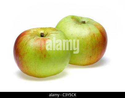 Bramley apples - Stock Photo