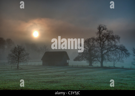 Extremely foggy winter afternoon, trees and thatched cricket pavilion rendered as silhouettes, Stanway, Gloucestershire, - Stock Photo