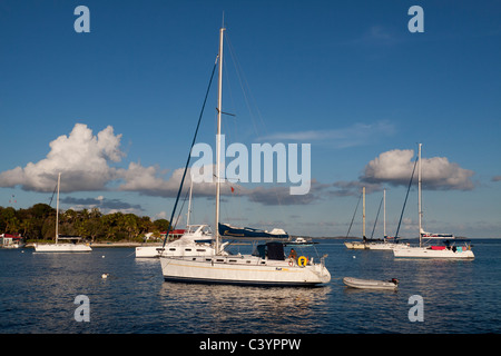 Sailboats moored in deep blue water in afternoon at Marina Cay in Tortola in British Virgin Islands - Stock Photo