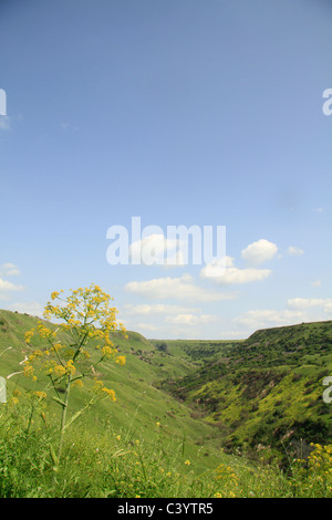 Golan Heights, Nahal Daliyot at Gamla Nature Reserve - Stock Photo