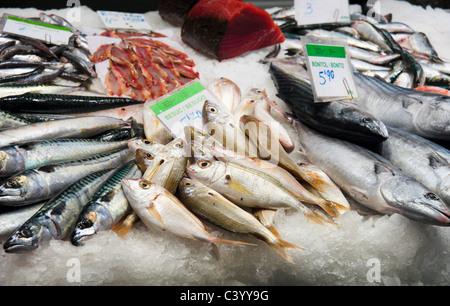 Fresh mackerel, sea bream and bonito for sale in La Boqueria public market, La Rambla (Las Ramblas), Barcelona, - Stock Photo