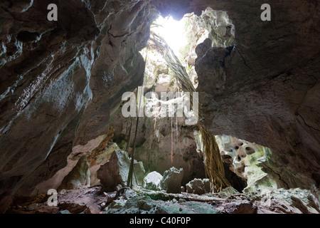 San Gabriel Limestone Cave, Los Haitises National Park, Dominican Republic - Stock Photo