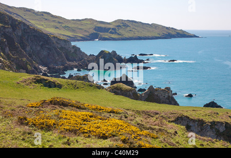 View from Bull Point to Morte Point on the south west coast path in North Devon near Woolacombe - Stock Photo