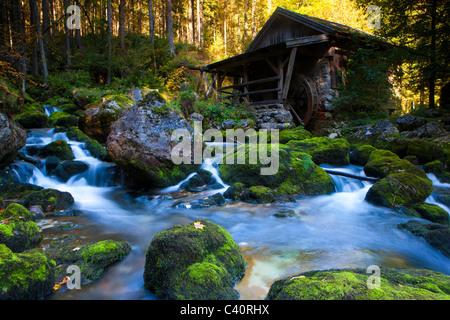 Golling, Austria, Europe, Salzburg, wood, forest, brook, stones, moss, mill, water mill - Stock Photo