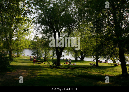 View down to the boating pond of Highgate Ponds, Hampstead Heath, Highgate, London, UK - Stock Photo