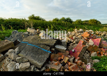 Illegally dumped rubble. Fly tipping of demolition waste in the countryside, Nottinghamshire, England, UK - Stock Photo