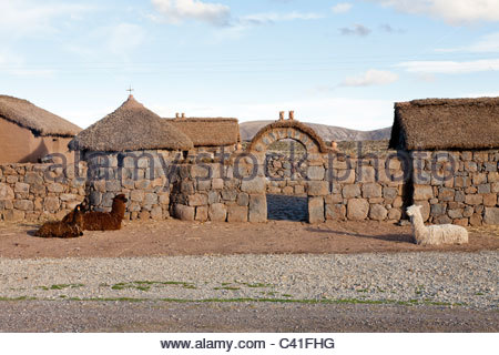 Llamas and Alpacas in front of traditional homes, near Atuncalla, Puno, Peru. - Stock Photo