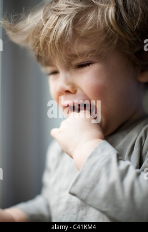 Toddler boy crying, portrait - Stock Photo