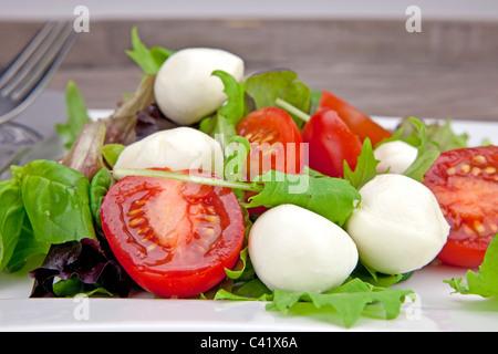 Tomato and mozzarella with lettuce on a white plate - Stock Photo