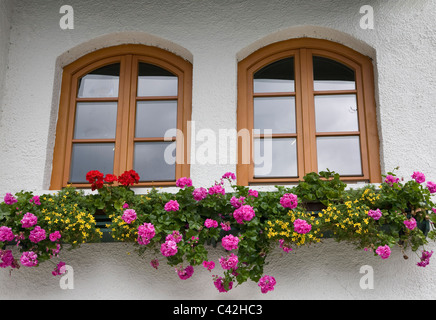 Windows and flower box in Hallstatt Austria - Stock Photo