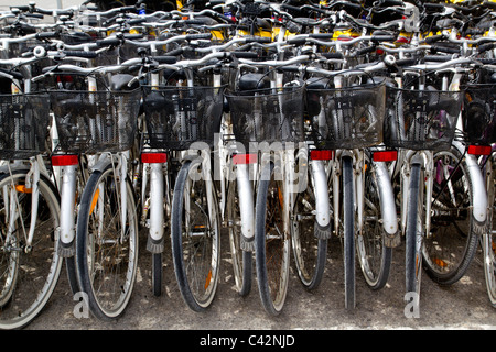 bicycles renting shop pattern rows parking in balearic islands - Stock Photo