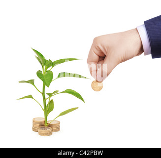 Sapling growing from pile of coins and hand holding a coin - Stock Photo